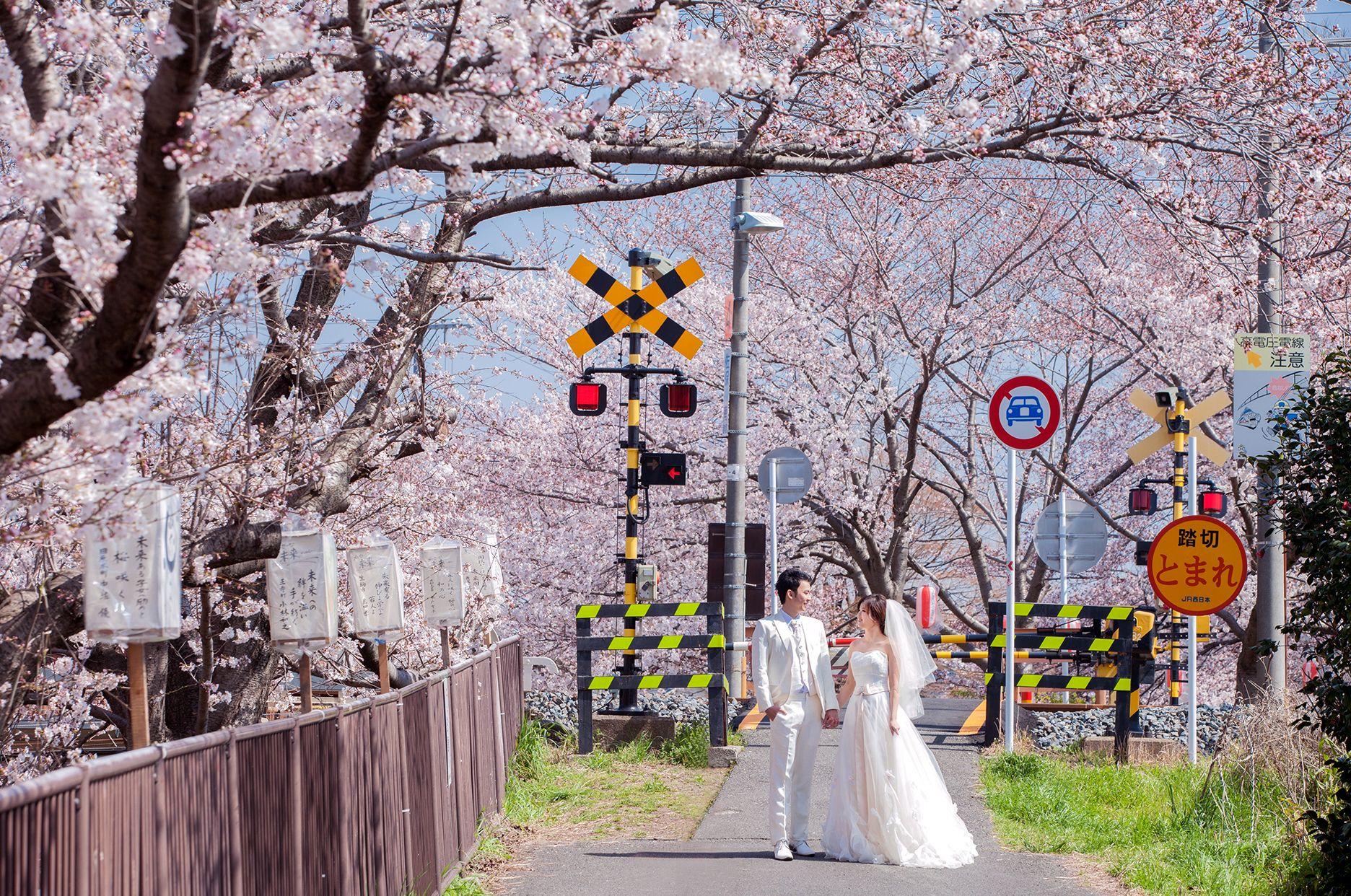 THE WORLD IS OUR STUDIO – JAPAN KYOTO & NARA  PHOTOGRAPHER: BLUEBAY WEDDING  #TAIWAN #JAPAN #KYOTO #NARA #OVERSEASWEDDING #PREWEDDING #BLUEBAY