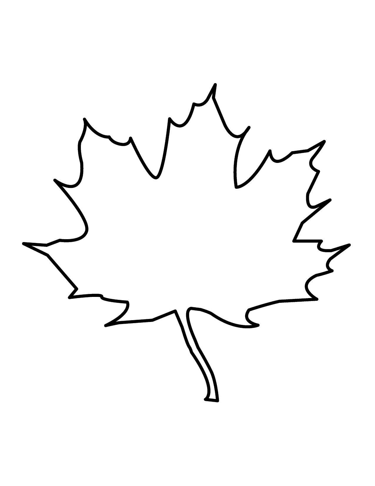 Drawings Of Leaf