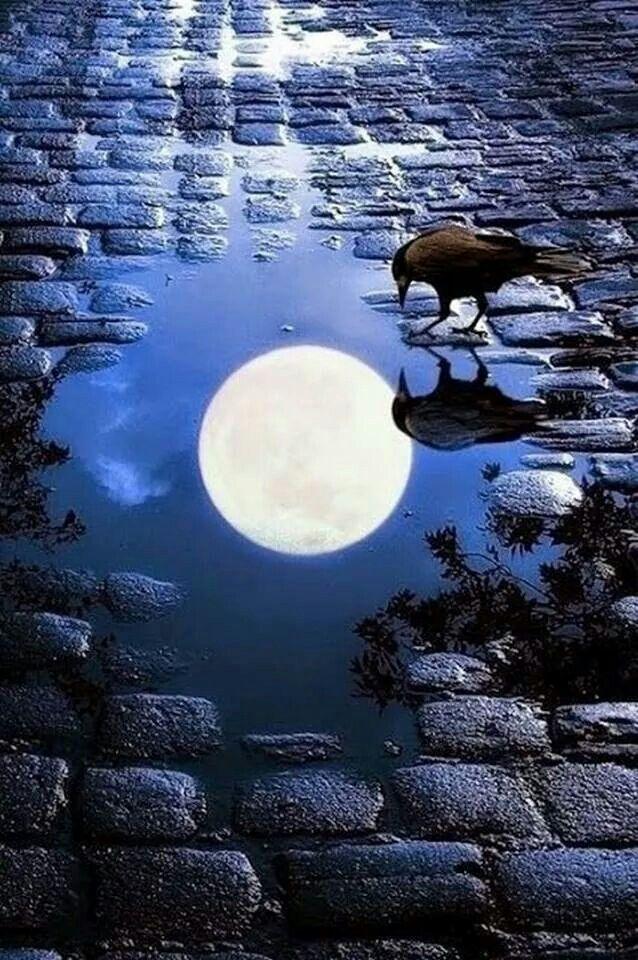 Pin By Ayad Zangana On Moon Beautiful Nature Beautiful Moon Nature