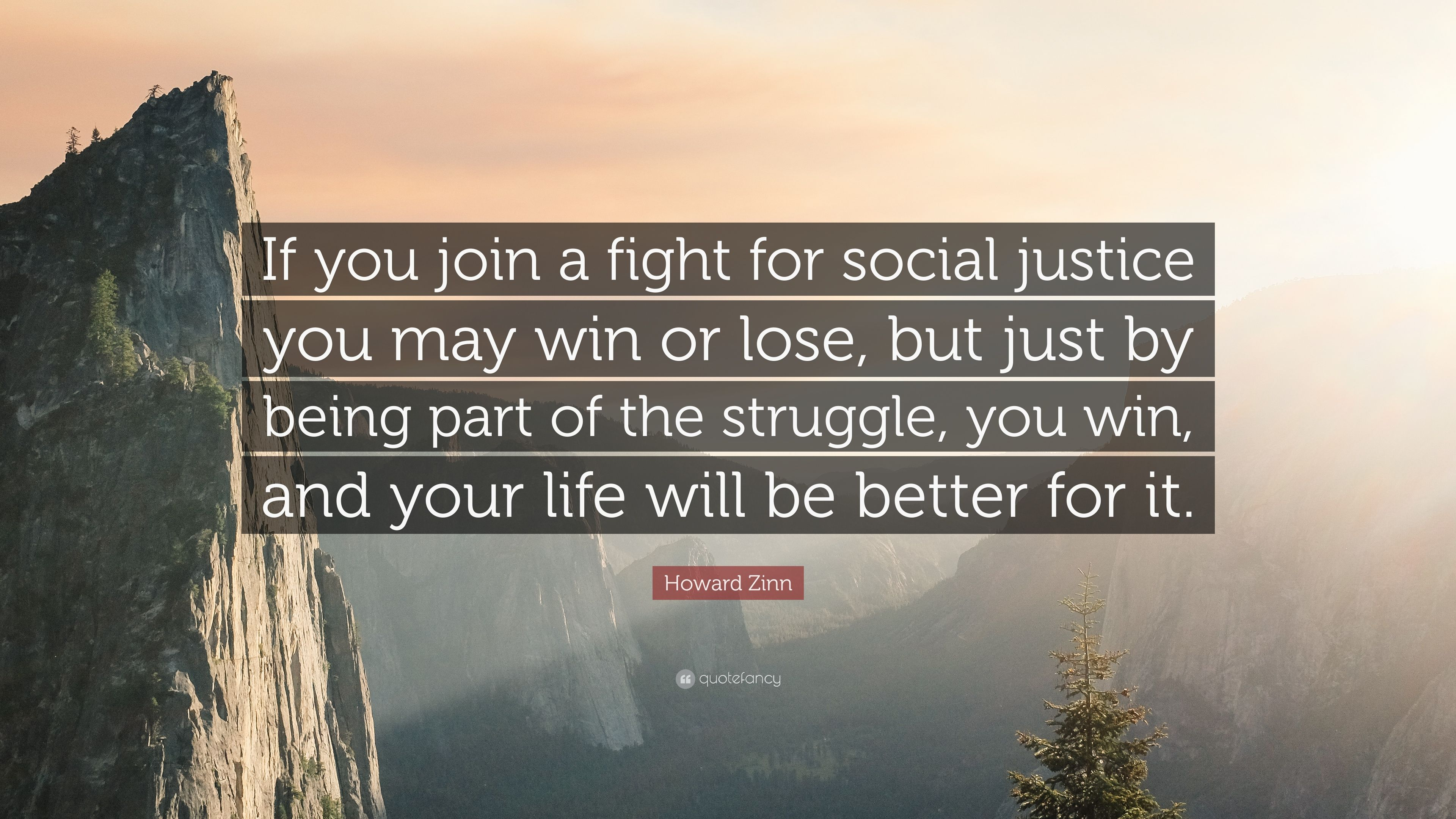 Social Justice Quotes Best Image Result For Social Justice Howard Zinn Quote  Words . Inspiration