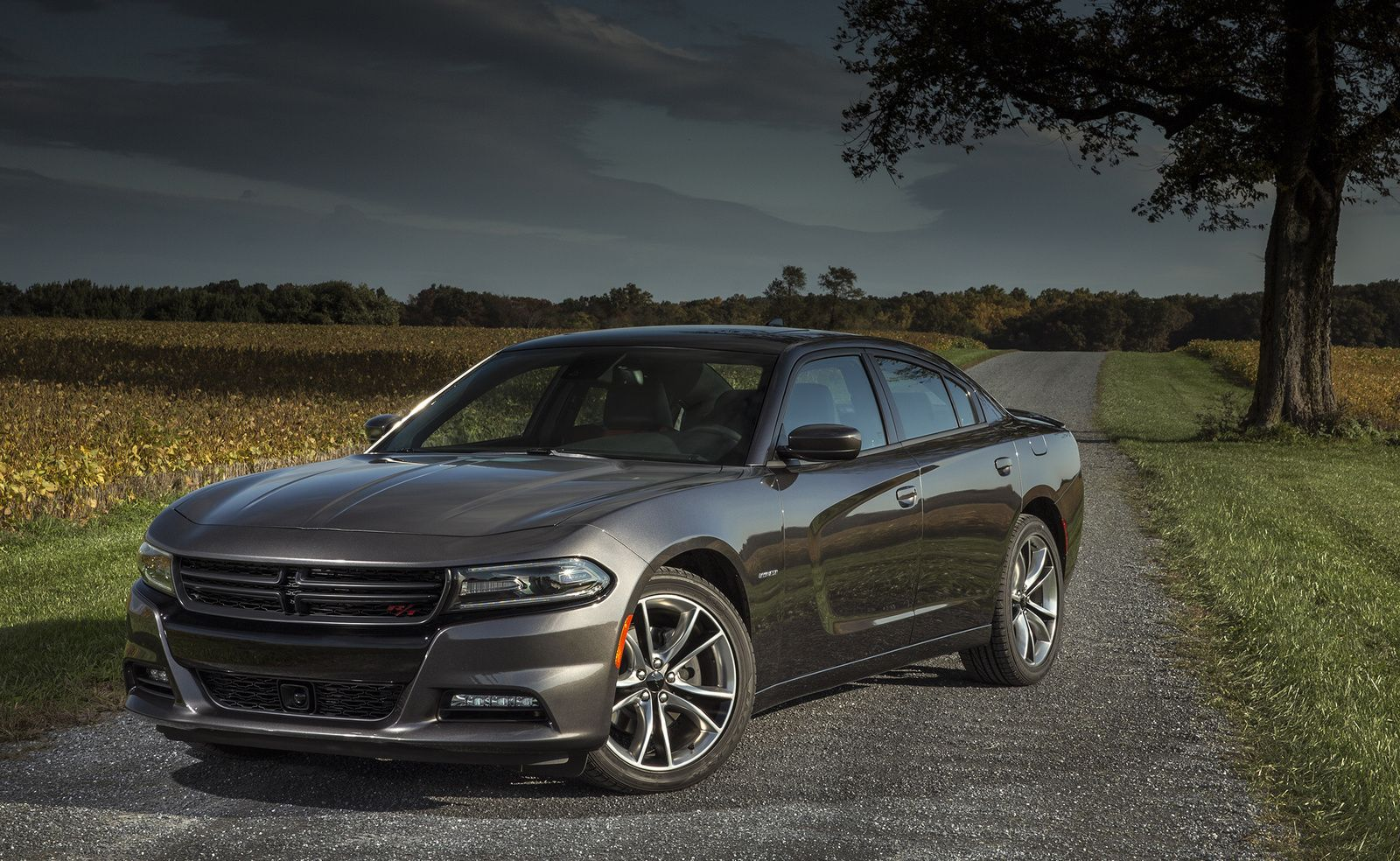 Dodge 2016 Dodge Charger For Sale In Your Area Cargurus Dodge Charger 2015 Dodge Charger Dodge Charger For Sale