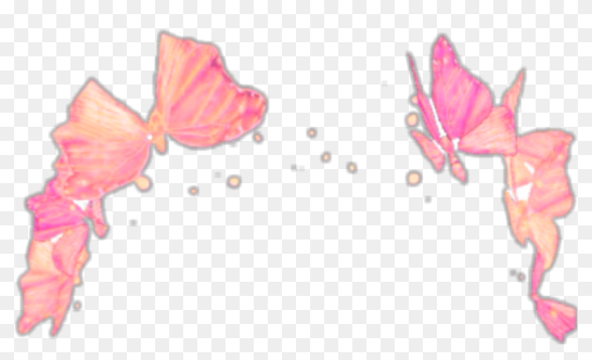 Find Hd Snapchat Crown Butterflies Aesthetic Filter Transparent Snapchat Filter Crown Hd Png Download Crown Png Snapchat Filters Png Snapchat Filters