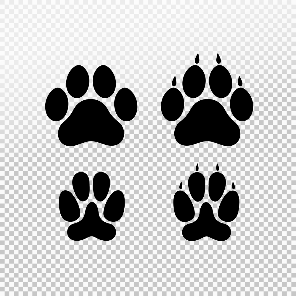 Dog Cat Set Paw Print Flat Cat Outline Cat Paw Print Cat Outline Images