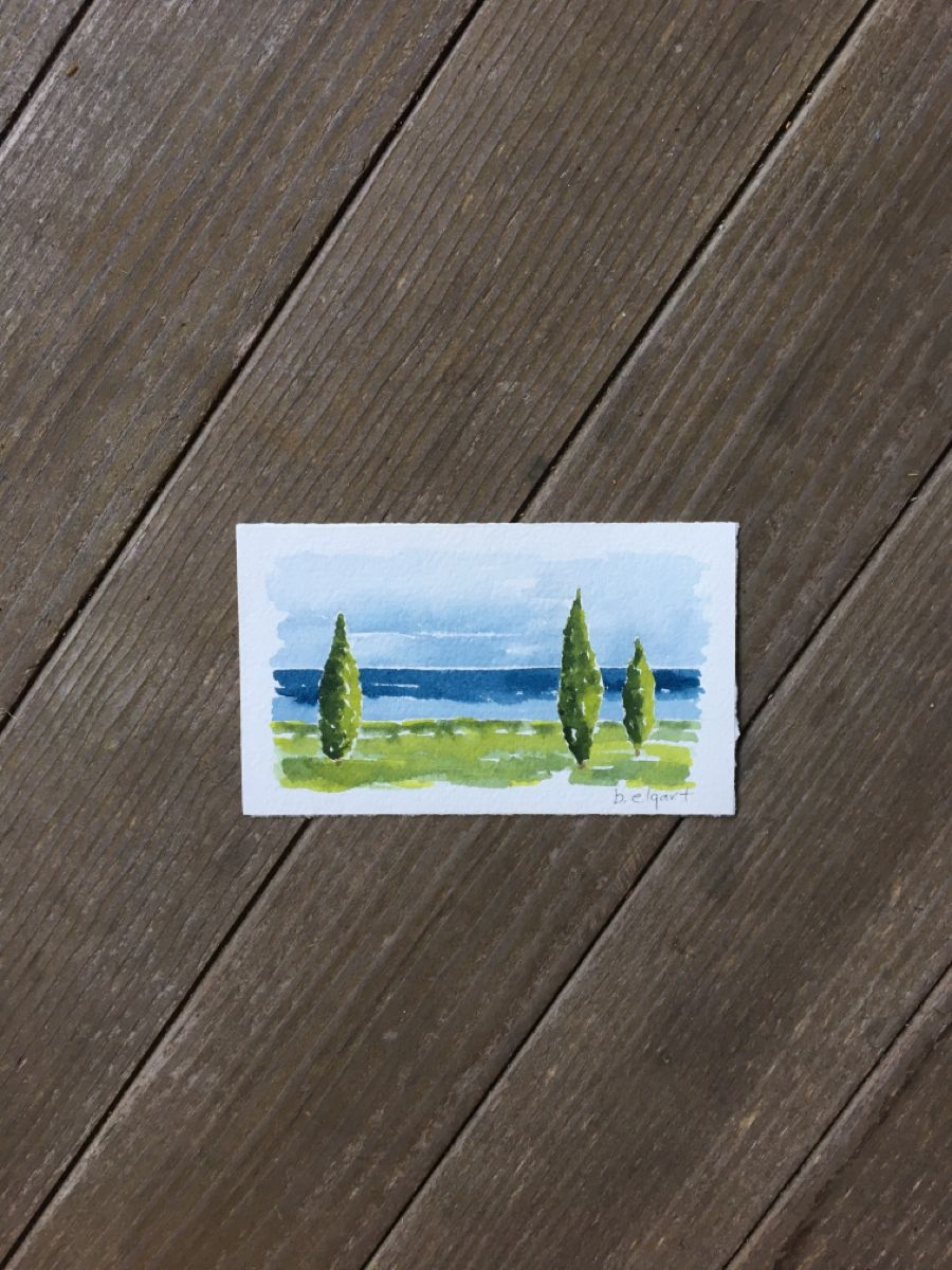 #cedartree #seascapepainting#newenglandliving #coastalliving #originalartwork #watercolorpainting