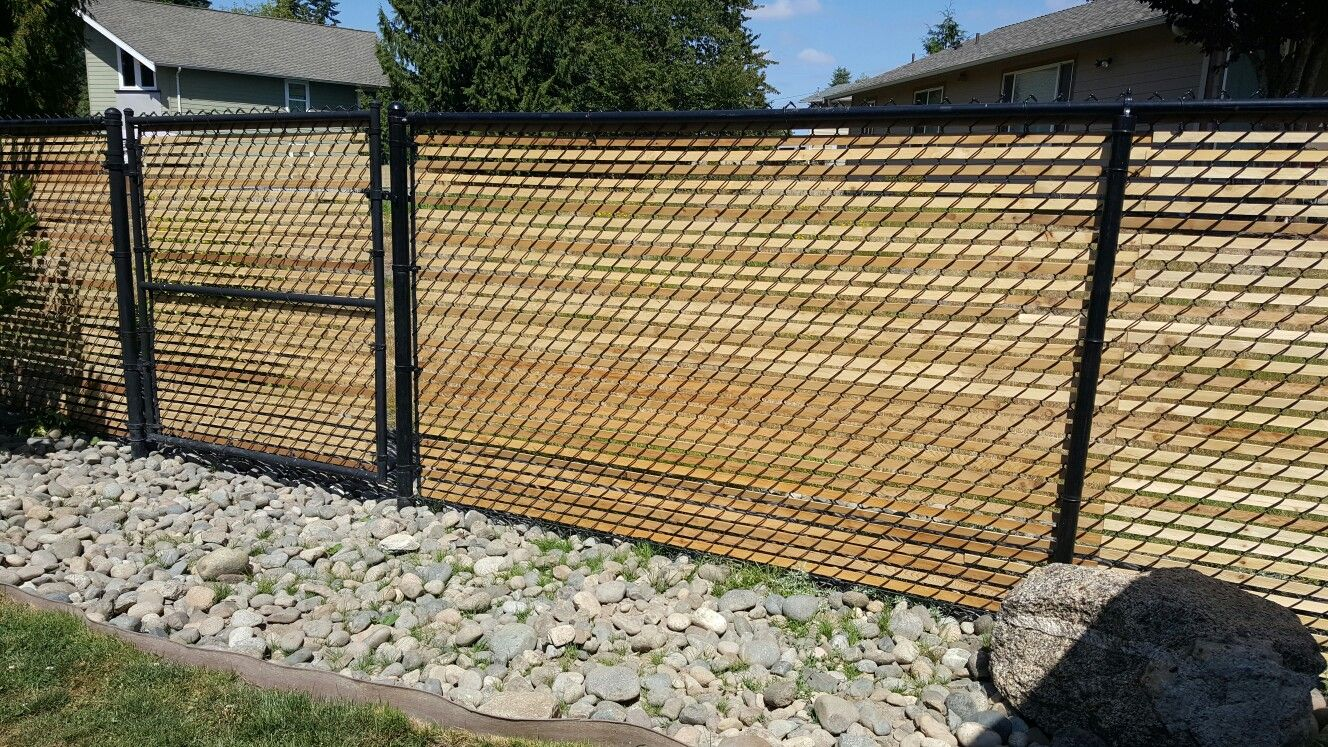 Cedar Slats In Chain Link Fence Fence Slats Fence Backyard