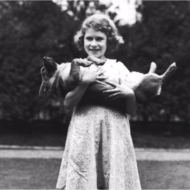 The Queen shows us how to properly hold a corgi and not surprisingly how I hold funny do, so that means I'm the queen of England!!