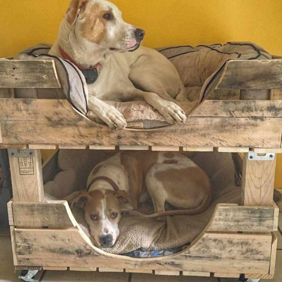 Large Dog Bed For 2 Bunk Bed Etsy In 2020 Dog Bed Large Dog Beds Homemade Diy Dog Bed