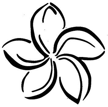 Image Result For Frangi Pani Flower Images Black And White Silhouette Cameo Vinyl Plumeria Stained Glass Butterfly
