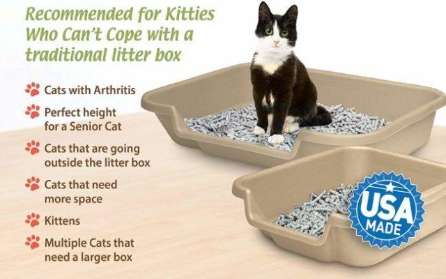 KittyGoHere Litter Box for Senior Cats Litter box, Cats