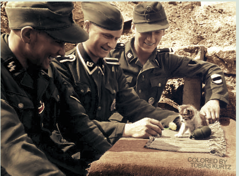 Waffen-ϟϟ with small cat