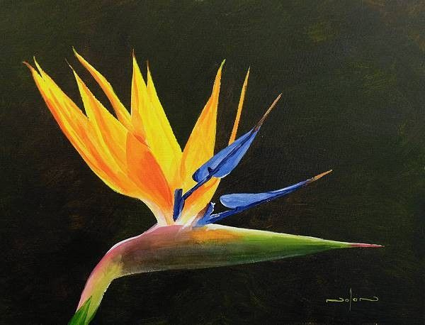 How To Paint A Strelitzia Flower In Acrylic Birds Of Paradise Flower Acrylic Painting Flowers Painting