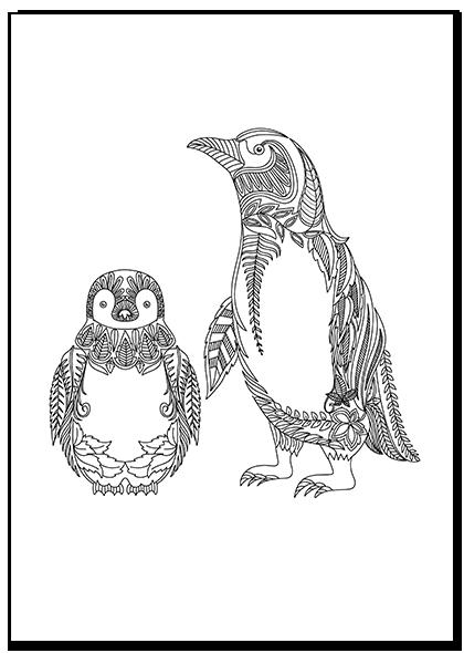 Penguin Coloring Page Adult coloring pages, Coloração