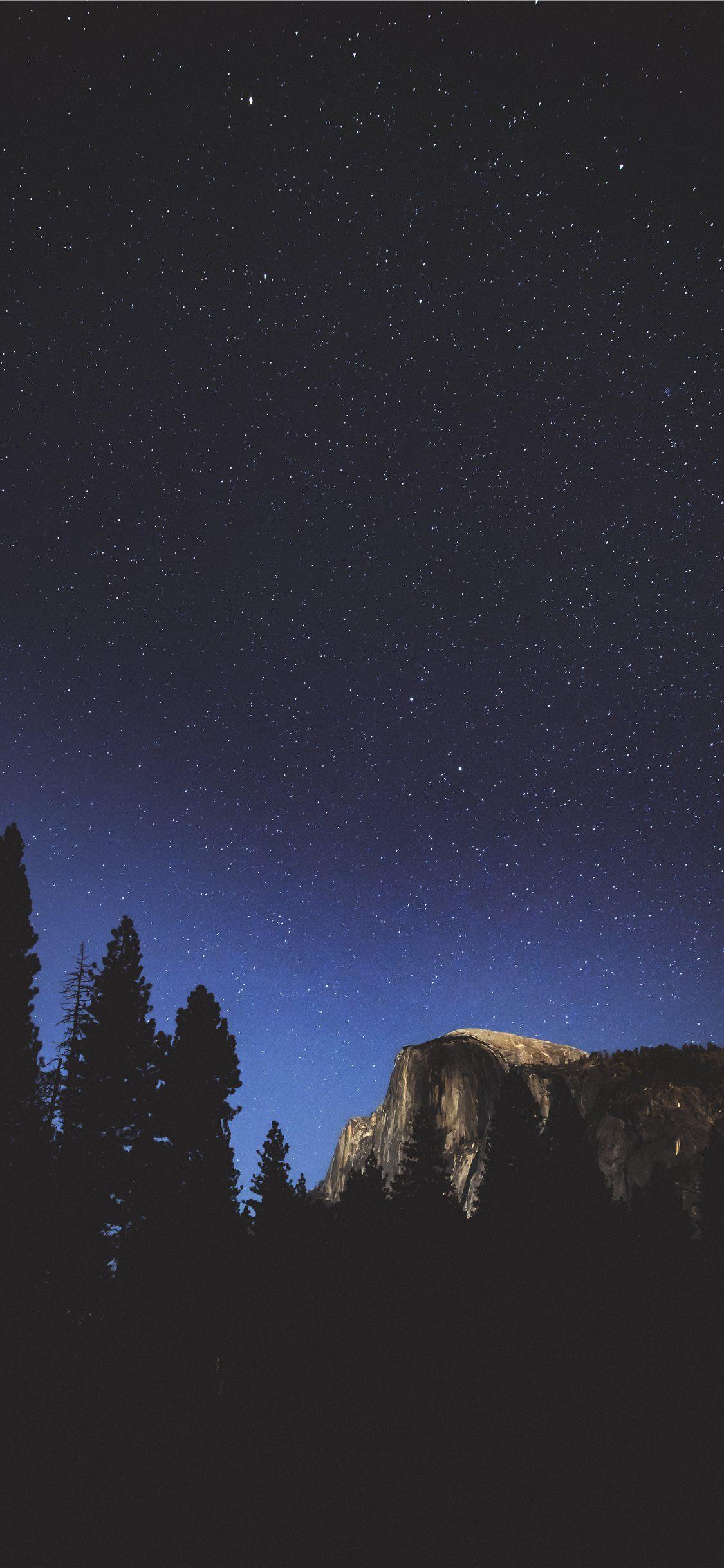 Silhouette Of Tree At Night Wallpaper Night Sky Wallpaper Iphone Wallpaper Night Sky Nature Iphone Wallpaper