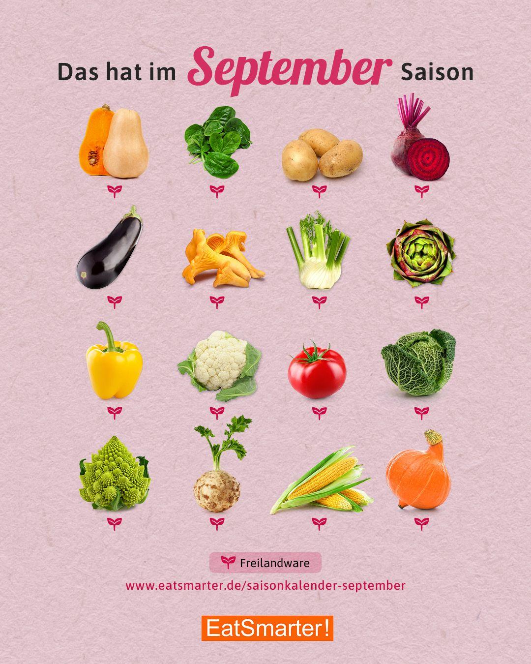 Saisonkalender September: Gemüse