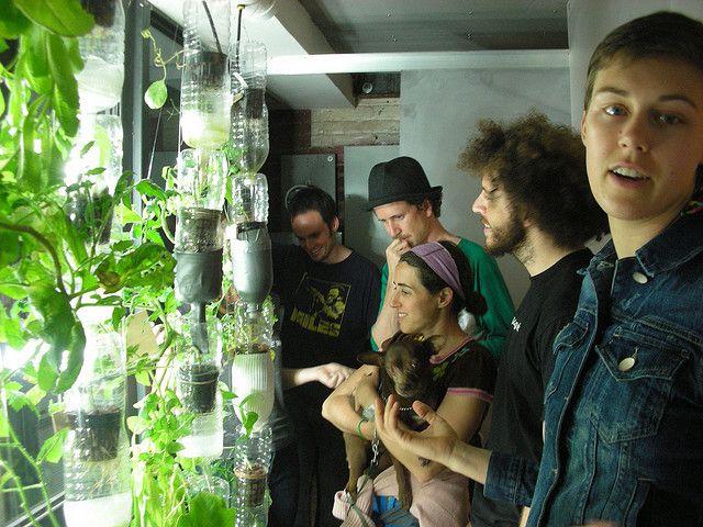 ventana huerta / jardin