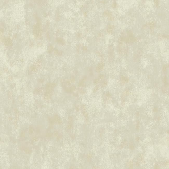 Pin By Jaime Aguilar On Stucco Texture: Sample Stucco Texture Wallpaper In Beige And Neutrals