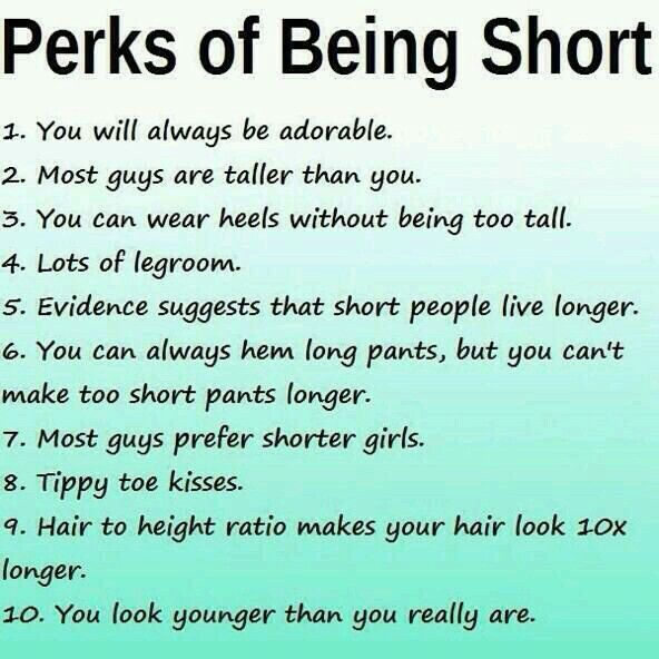 Exceptionnel Short People Quotes, Short Girl Quotes, Short Girls, Short I, Short Girl  Problems, Short People Problems, The Perk, Search, The Ou0027jays