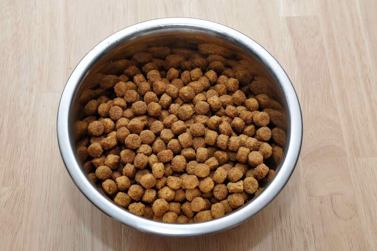 Shoresu Pet Feeding Double Bowls Plastic Anti Ants Food Water