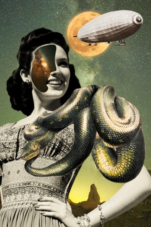 A surrealist collage art print composed of space, a vintage snake illustration, a WWI blimp and vintage portrait photography. #digitalcollage #collagework #collagemaker #contemporarycollage #cutandpaste #popsurrealism #scifiart #collage #collageart #collageartist #collageartists #collageartwork #digitalart  #collages #collagecollective  #collagesociety #surrealist #aestheticwallart #artprint #surrealart #digitalartist #beautifulbizzare #vintagebotany #botanyillustration #digitalcollageart