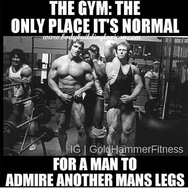 Funny Fitness Gym Humour Gym Memes Lol Fitness Motivation