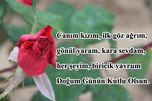 Sevgiyə Aid Dogum Gunu Təbriki In 2021 Herbs