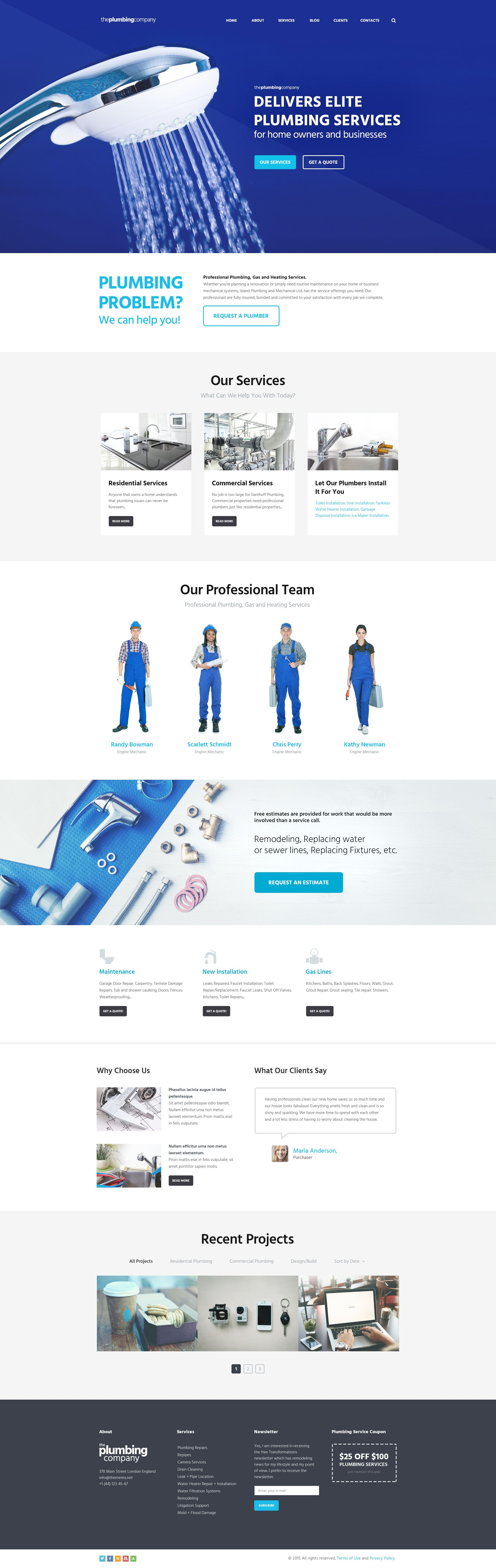 Wordpress Theme Is Designed For Plumbing Companies And Firms But It Fits Perfectly For Any Website Design Layout Website Design Trends Business Website Design
