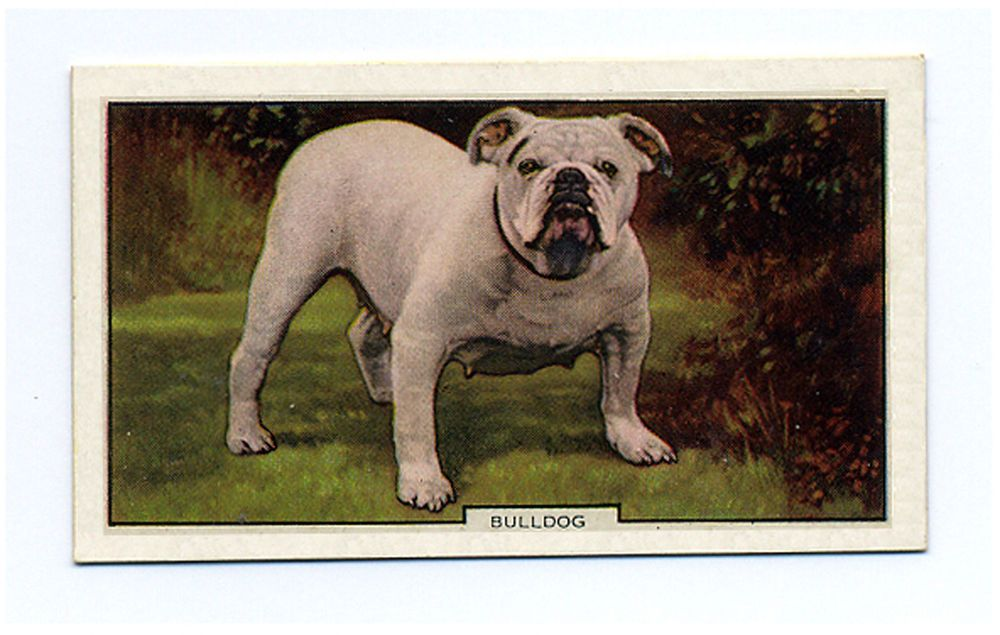 Pin On Tobacco Cards
