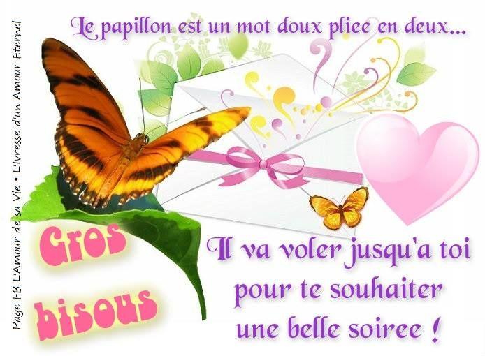 Le papillon est un mot doux pliée en deux... Il va voler jusqu'a toi pour  te souhaiter une belle soiré… | Image bonne soirée, Jolie carte  anniversaire, Bonne soirée