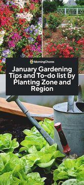 Grünfläche für die besten Tipps und Tricks für Anfänger im Januar   – Gärtnern
