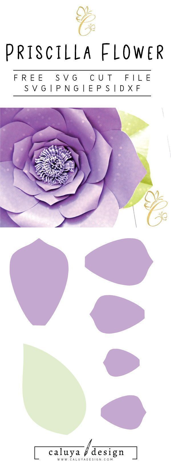 Priscilla flower free cut file by catching colorflies designs priscilla flower free cut file by catching colorflies designs cricut pinterest cricut cuttings and silhouette mightylinksfo