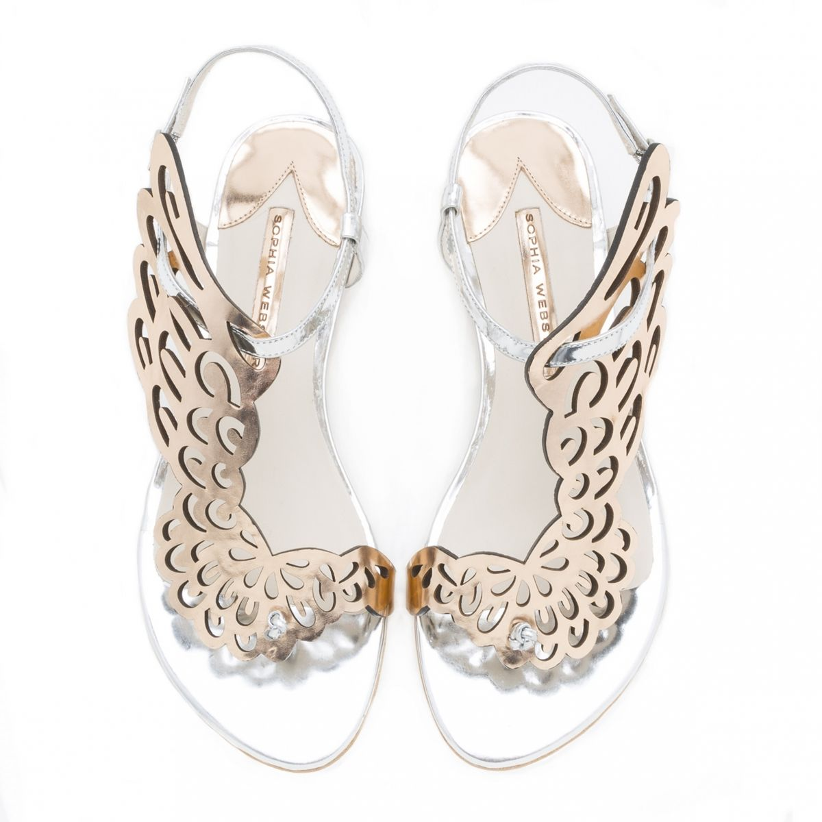 SOPHIA WEBSTER - Bibi papillon appartements : Chaussure Fashion