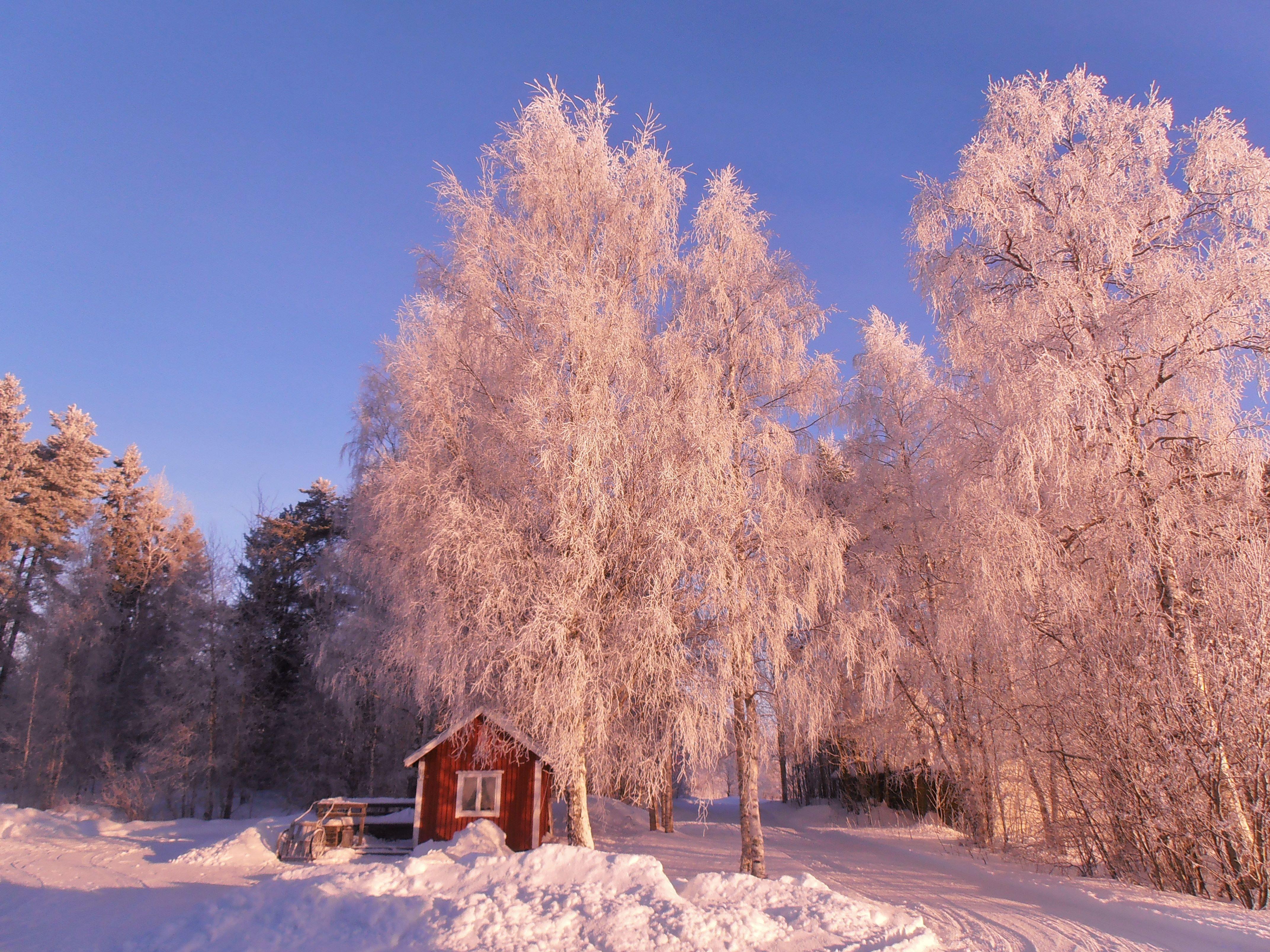Frosty winter day here in Oulu.