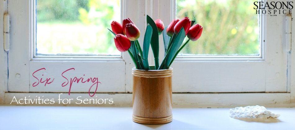seasons hospice & palliative care jobs