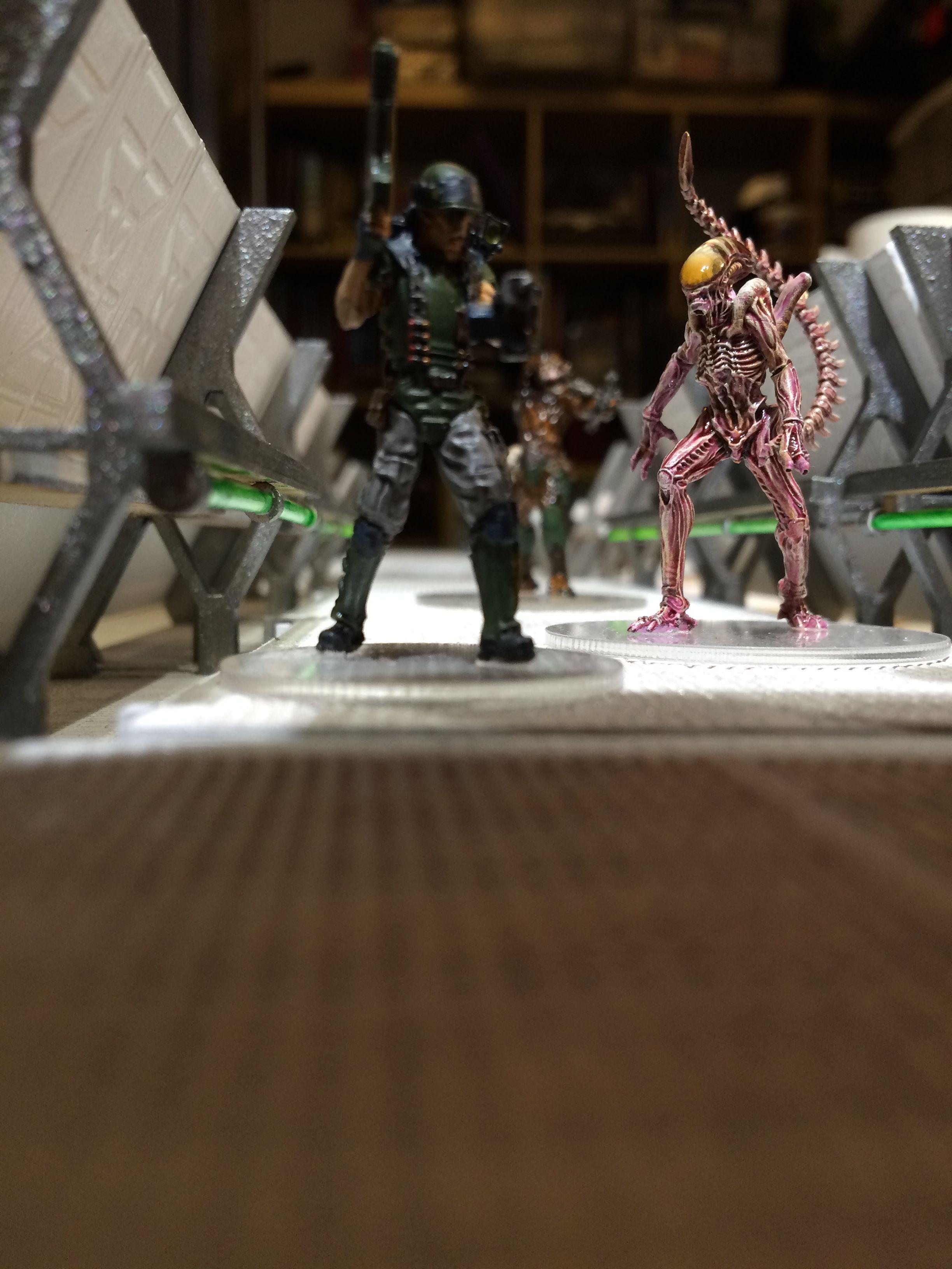 Alien vs Predator: The Hunt Begins   Image   BoardGameGeek ...