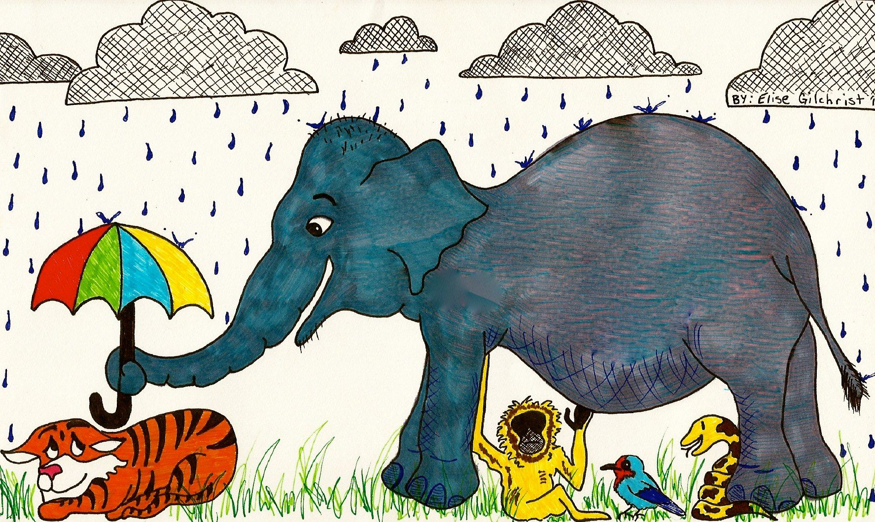 Could Asian Elephants Make A Good Umbrella Species Could We