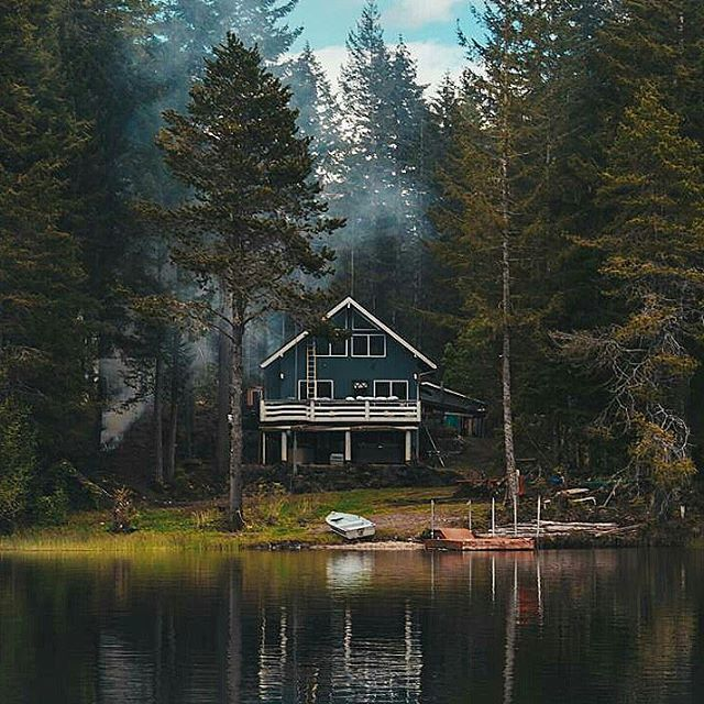 This Tiny Cabin In The Redwoods Is The Perfect Getaway For: Picture Perfect What More Can We Say? How Would You