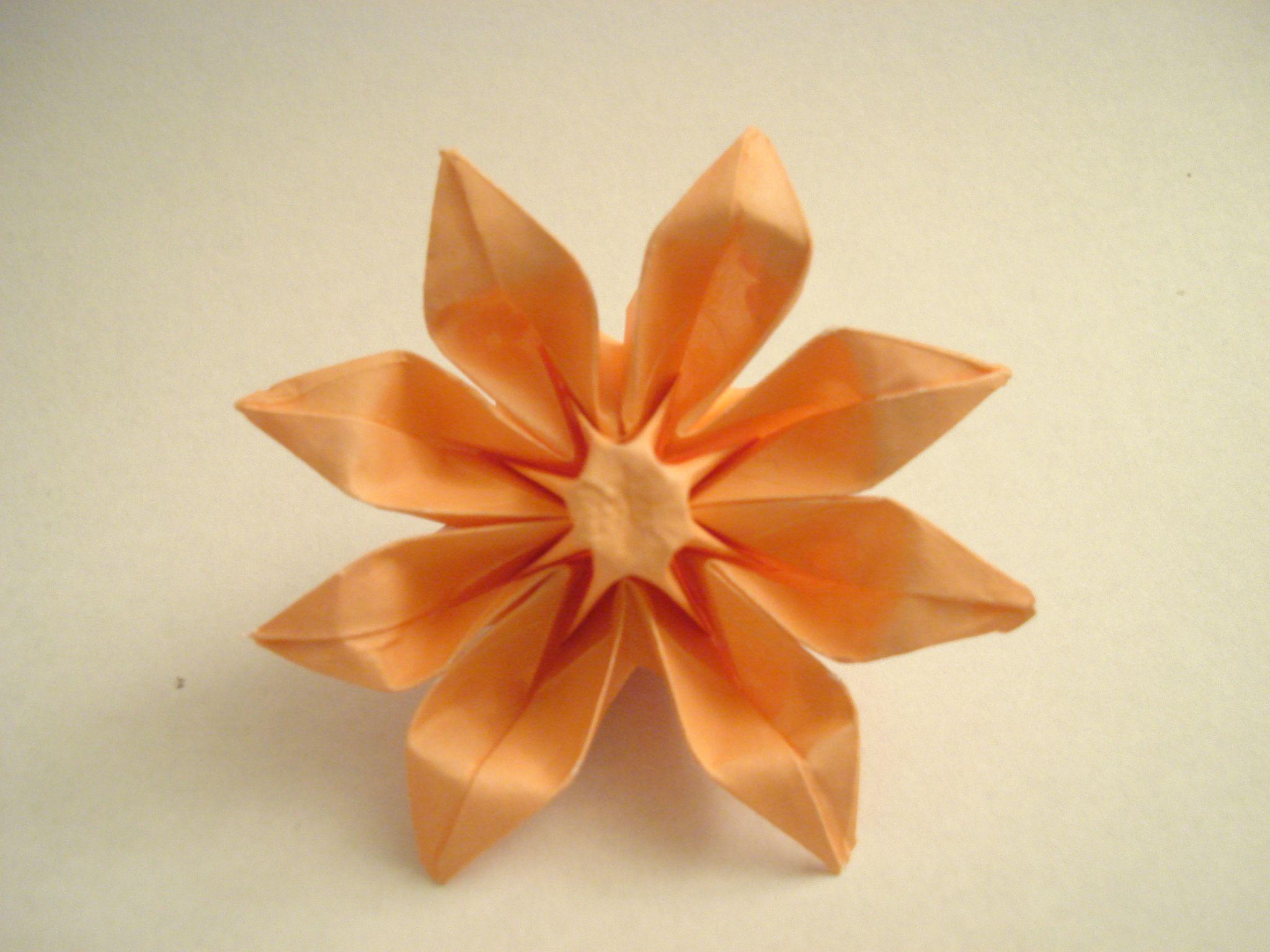 Origami Flowers Origami Pinterest Origami Flower And Oragami