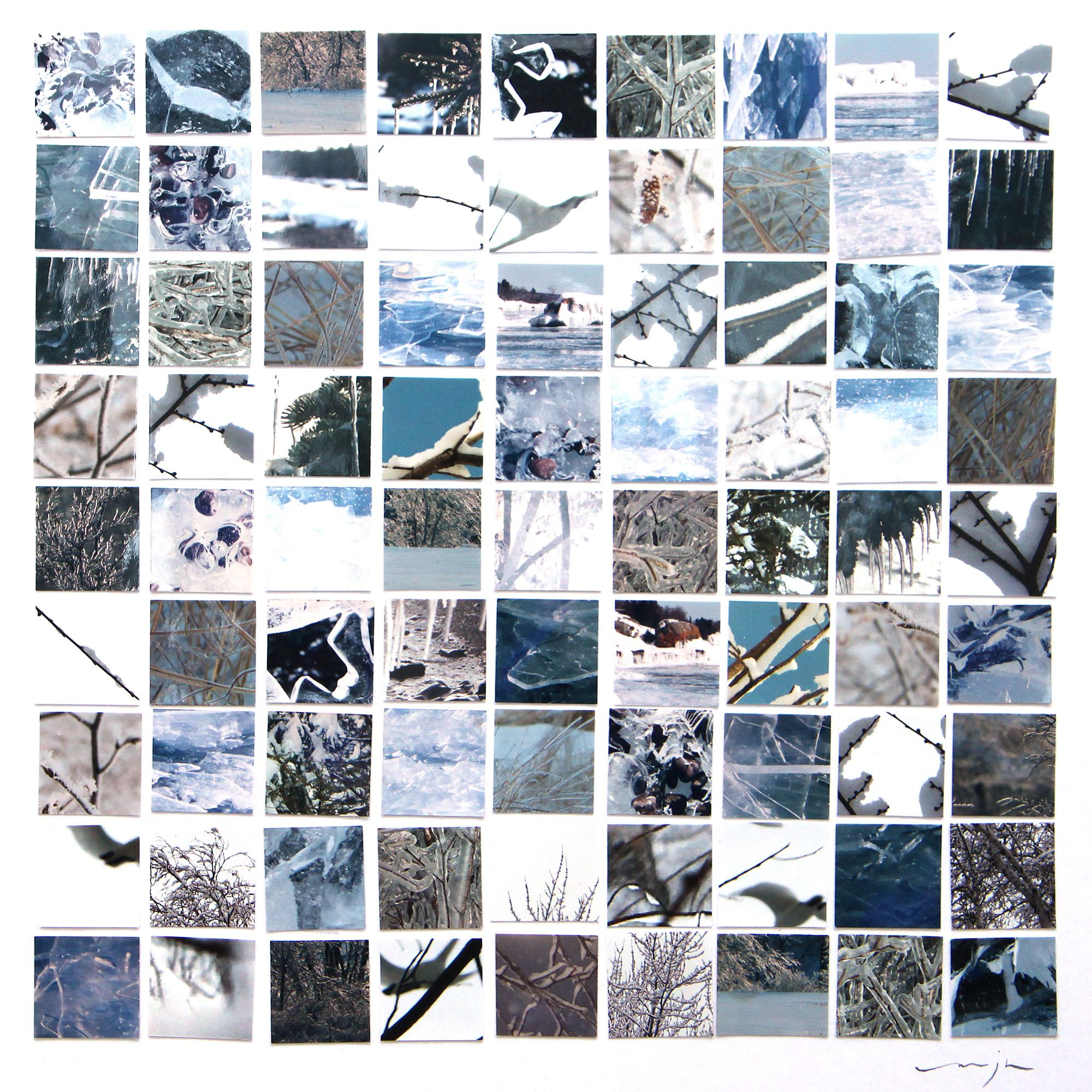 photo montage : winter (by mary jo hoffman)