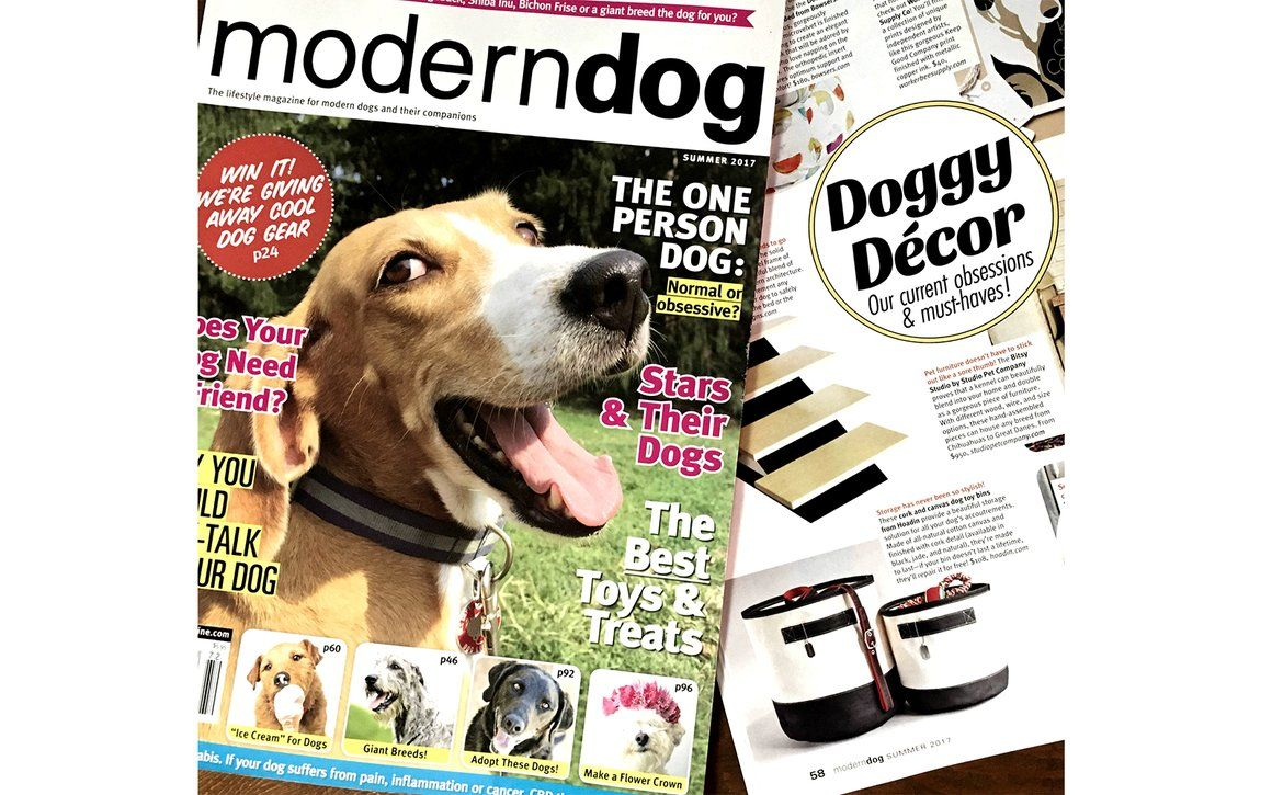 Hoadin Is An Eco Friendly Brand Of Dog Collars Dog Leashes Dog