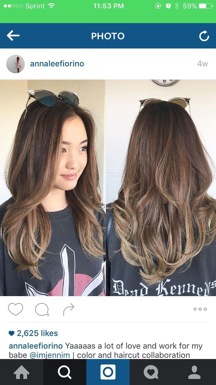 Pin By Mary Ann Lee On Hairrrr Hair Color Asian Balayage Asian Hair Asian Hair Dye
