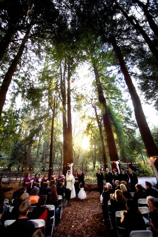 PROS: Ceremony & reception in one place. Redwood trees. Privacy ...