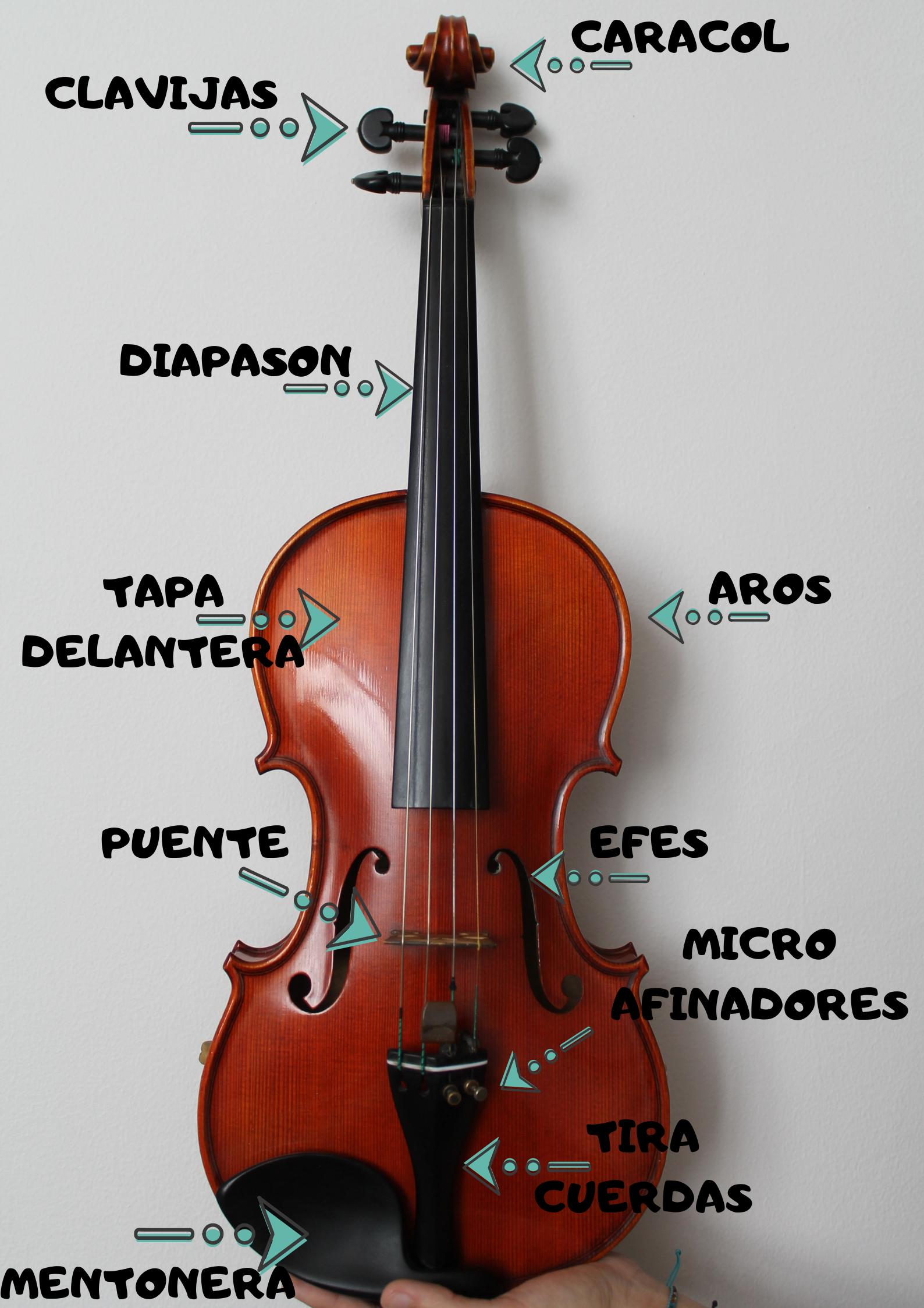 Guia Para Elegir Tu Primer Violin Soul Violin Studio Violines Música De Violín Clases De Violin