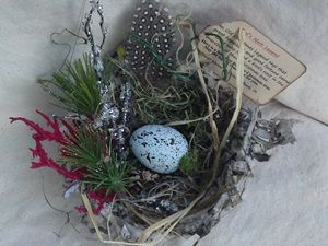 "Lovely nest for your Christmas tree! Nest made of shredded paper. 6"" wide Christmas legend says that great happiness and good fortune came to those who found a bird's nest in the branches of their Christmas tree. Here is a little nest for your tree. May the legend come true for you.  http://www.etsy.com/shop/CWencel"