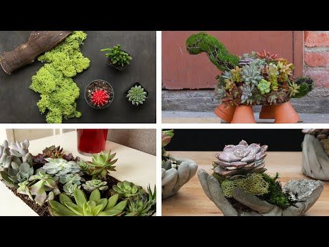 Popsicle Stick Mini Pallet W Succulents Garden Answer