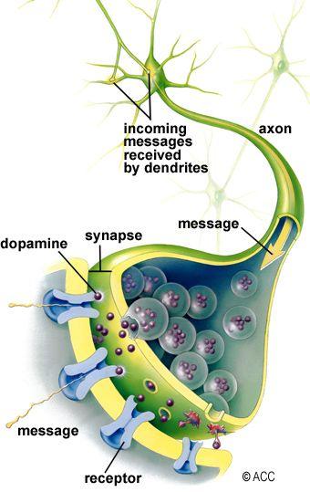 Parkinson's Disease (PD) Mayfield Brain & Spine Cincinnati
