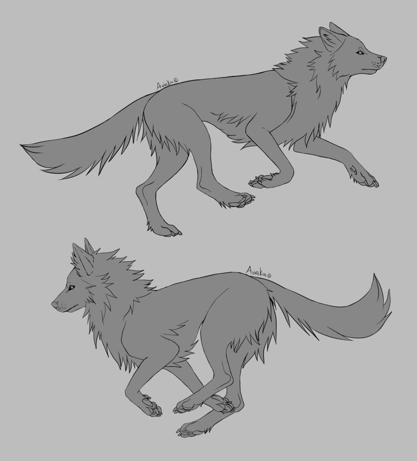 Photo of Free Wolf Running Linearts by Aviaku on DeviantArt