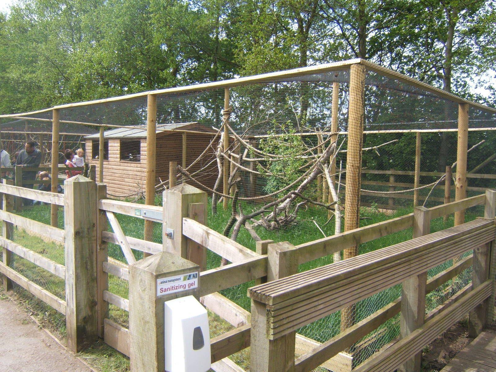 New Marmoset And Tamarin Enclosures Reaseheath Zoo Gallery