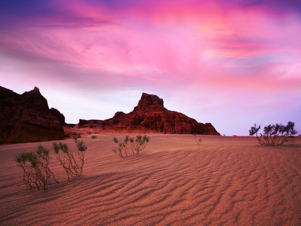Facts about Gobi Desert | World Travel | Gobi desert ...