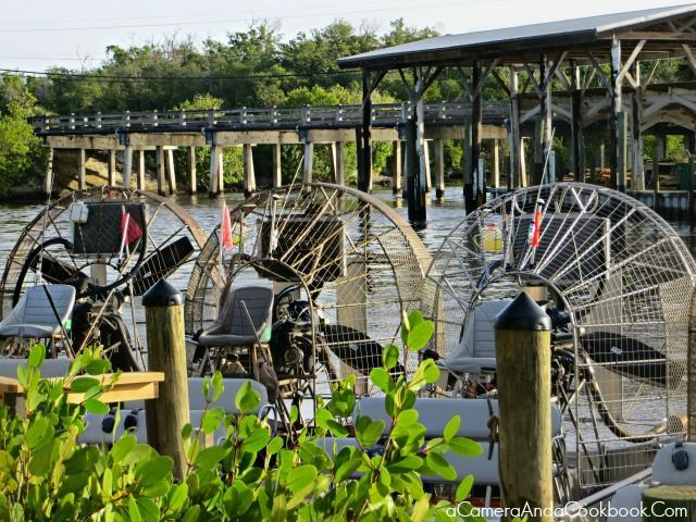 Everglades Airboat Tour and Gator Show