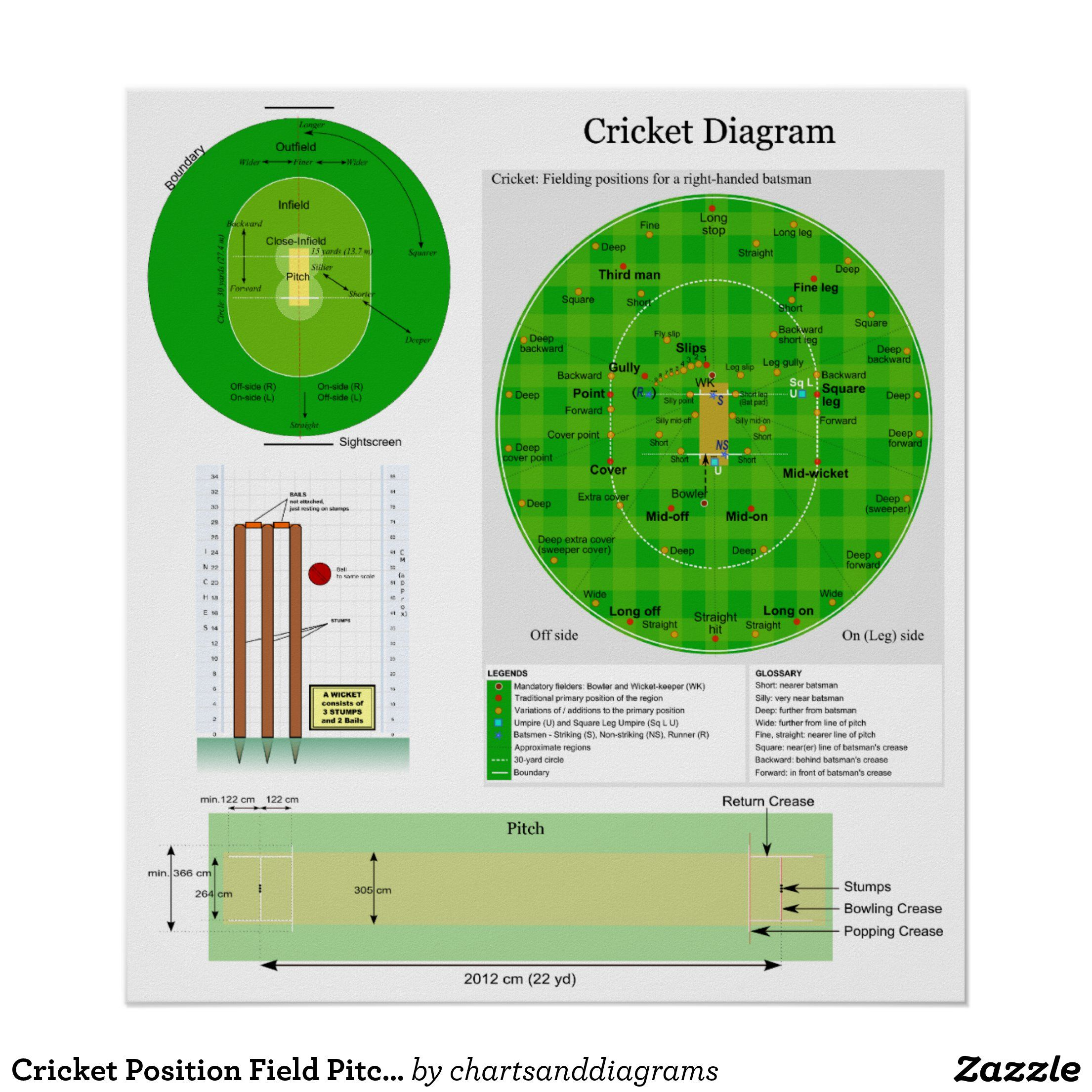 Cricket Position Field Pitch And Wicket Diagram Poster Zazzle Com In 2020 Cricket Wicket Wicket Cricket